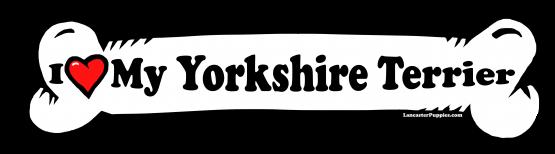 I love my Yorkshire Terrier Dog Bone Sticker Free Shipping
