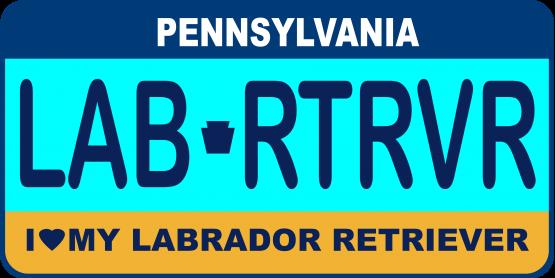 Labrador Retriever License Plate