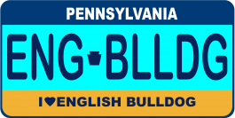 English Bulldog License Plate
