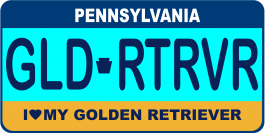 Golden Retriever License Plate
