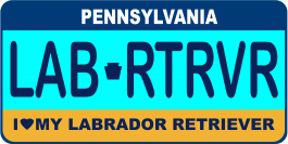 Labrador Retriever License Plate
