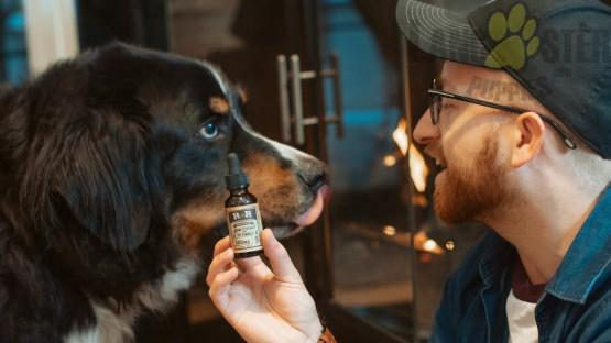Man holding oil extract with dog