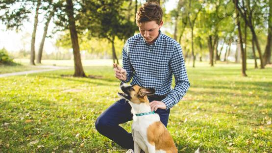 young man with dog in grass